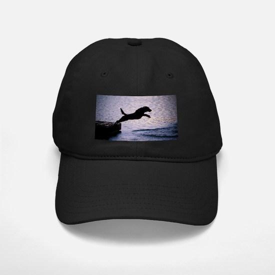 Chesapeake Bay Retriever Leaping In the Baseball Hat