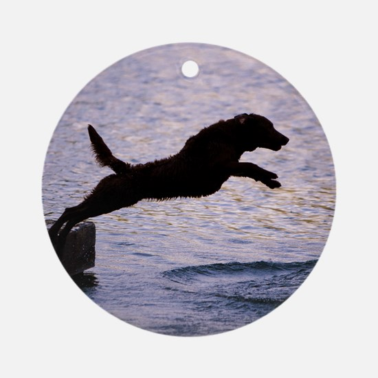 Chesapeake Bay Retriever Leaping In Round Ornament