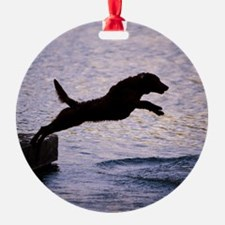 Chesapeake Bay Retriever Leaping In Ornament