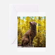 Chesapeake Bay Retriever Greeting Cards