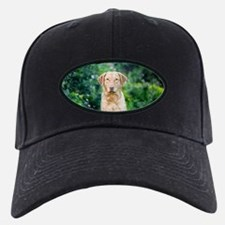 Chesapeake Bay Retriever Baseball Hat