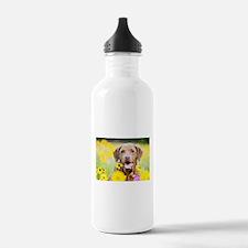 Chesapeake Bay Retriev Sports Water Bottle