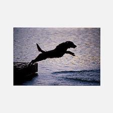 Chesapeake Bay Retriever Leaping Rectangle Magnet