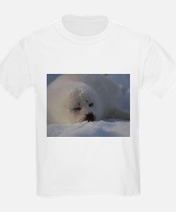 Baby Seal Ash Grey T-Shirt