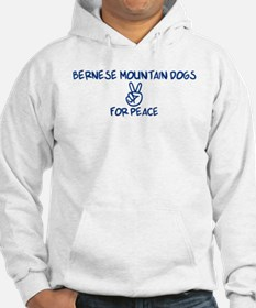 Bernese Mountain Dogs for Pea Hoodie