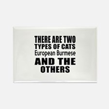 There Are Two Types Of European B Rectangle Magnet