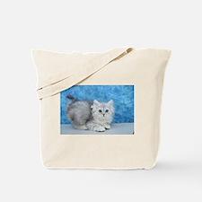 Ella - Silver Tabby Ragamuffin Kitten Tote Bag