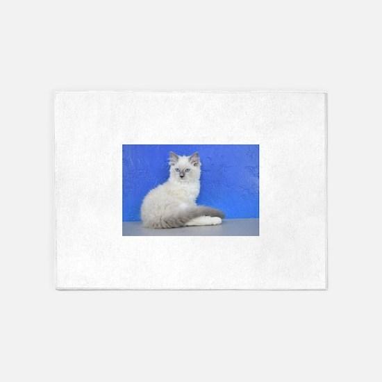 Isabelle - Blue Mitted Ragdoll Kitten 5'x7'Area Ru