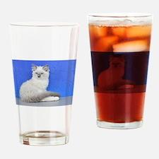 Isabelle - Blue Mitted Ragdoll Kitten Drinking Gla