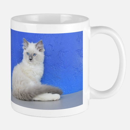 Isabelle - Blue Mitted Ragdoll Kitten Mugs