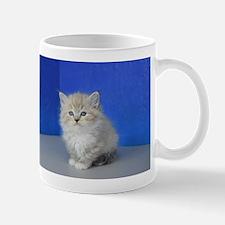 Jenna - Seal Mitted Lynx Mink Ragdoll Kitten Mugs
