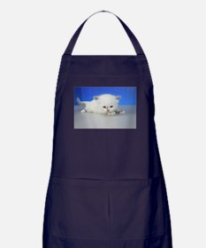 Jenny - Seal Tortie Mitted Ragamuffin Kitten Apron