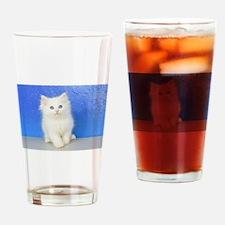 Joseph - Red Bicolor Ragdoll Kitten Drinking Glass