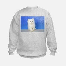 Joseph - Red Bicolor Ragdoll Kitten Sweatshirt