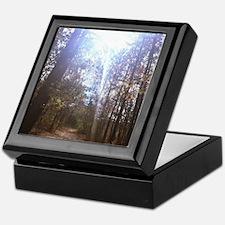 Cute Illuminating Keepsake Box
