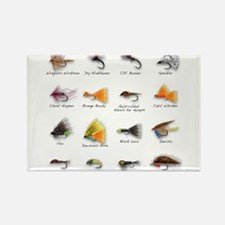 Flies Magnets