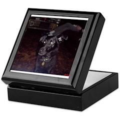Xander, Magical Dog Keepsake Box