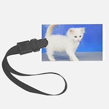 Moses - Cream Bicolor Ragdoll Kitten Luggage Tag