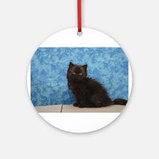 Onyx - Black Solid Ragamuffin Kitten Round Ornamen