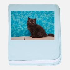 Onyx - Black Solid Ragamuffin Kitten baby blanket