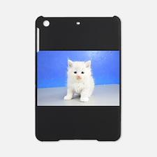Reese - Blue Bicolor Lynx Ragdoll Kitten iPad Mini