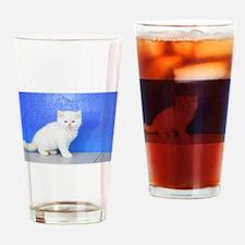 Rudolph - Red Ragamuffin Kitten Drinking Glass