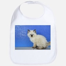 Sven - Seal Point Ragdoll Kitten Baby Bib