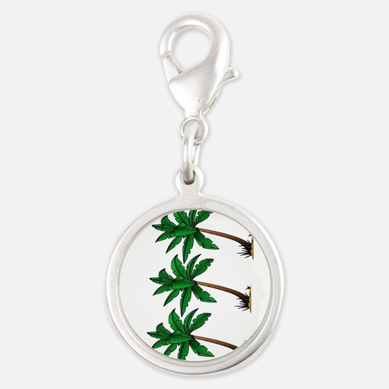 PALMS Charms