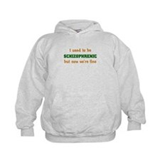 I Used To Be Schizophrenic But Now We're Fine Hoody