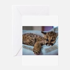Outlaw Picture Ornament Greeting Cards