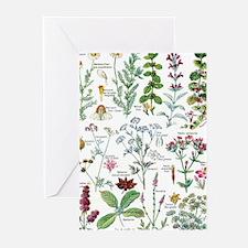 Botanical Illustrations - Larousse Greeting Cards
