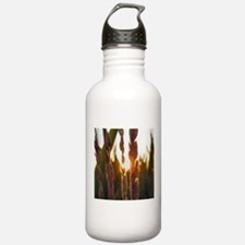 Corn Water Bottle