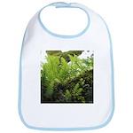Ferns on Oak Tree Baby Bib