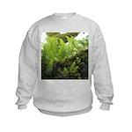 Ferns on Oak Tree Sweatshirt