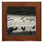 Gulls in Flight Framed Tile