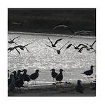 Gulls in Flight Tile Coaster