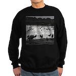Gulls in Flight Sweatshirt