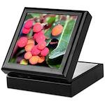 Madrone Berries Keepsake Box