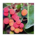 Madrone Berries Tile Coaster