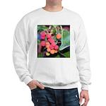 Madrone Berries Sweatshirt