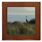Great Blue Heron Framed Tile