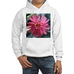 Indian Pink Sweatshirt