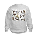 Wildlife Crew Neck