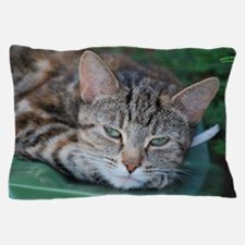 Tabby Cat Lounging Pillow Case