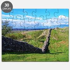 Unique Scenery Puzzle