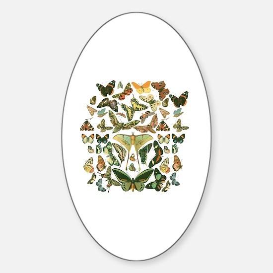 Cute Moths Sticker (Oval)