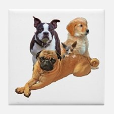 Dog posse with a hairless cat Tile Coaster