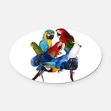Parrots Oval Car Magnet