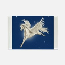 Pegasus In Flight Magnets