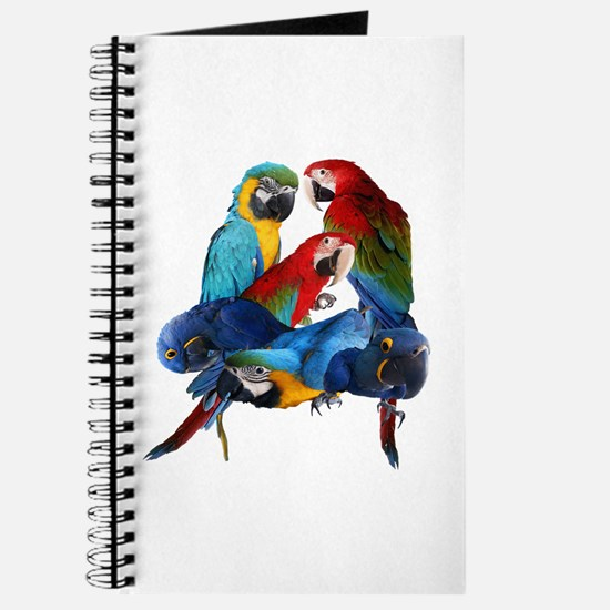 Macaws Journal